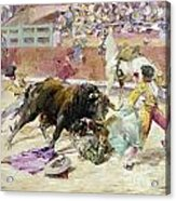 Spain - Bullfight C1900 Acrylic Print