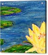 Sparking Lillies Acrylic Print