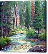Sparkling Stream Acrylic Print