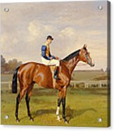 Spearmint Winner Of The 1906 Derby Acrylic Print by Emil Adam