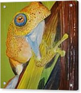 Speckled Frog Acrylic Print