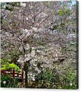 Spectacular Japanese Garden Acrylic Print