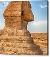 Sphinx Profile Acrylic Print by Jane Rix