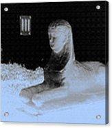 Sphinx Statue Three Quarter Profile Blue Glow Usa Acrylic Print