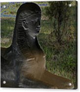Sphinx Statue Three Quarter Profile Solar Usa Acrylic Print