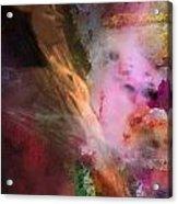 Spice Dream Acrylic Print