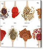 Spices Collection On Spoons Acrylic Print