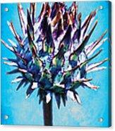 Spikey Head Acrylic Print