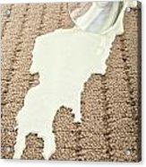 Spilled Milk On Carpet  Acrylic Print