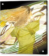 Spinning By Jan Marvin Acrylic Print