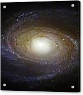 Spiral Galaxy M81 Acrylic Print by Jennifer Rondinelli Reilly - Fine Art Photography