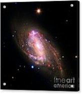 Spiral Galaxy Ngc 3627, Composite Image Acrylic Print