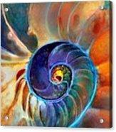 Spiral Life Acrylic Print