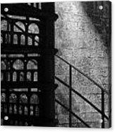 Spiral Stairs 1 - Mono Acrylic Print