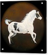 Spirit Horse Drum  Acrylic Print