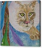 Spirit Of The Mountain Lion Acrylic Print