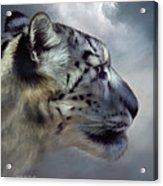 Spirit Of The Sky Acrylic Print by Carol Cavalaris