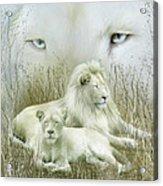 Spirit Of The White Lions Acrylic Print