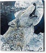 Spirit Of The Wolf Acrylic Print