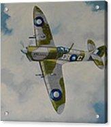 Spitfire Mk.viii Acrylic Print
