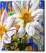 Splash Of Color Acrylic Print