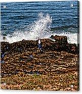 Splash Zone Acrylic Print