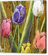 Splashy Tulips II With Gold Leaf By Vic Mastis Acrylic Print by Vic  Mastis