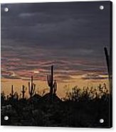 Splender At Sunset Acrylic Print