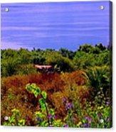 Splendor Of The Mount Of Beatitudes And The Sea Of Galilee Acrylic Print by Sandra Pena de Ortiz