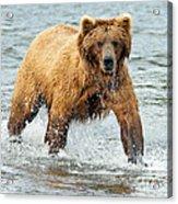 Splish Splash Acrylic Print