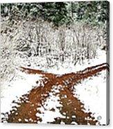 Split Decision Acrylic Print by Marilyn Hunt