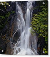 Split Top Falls Acrylic Print