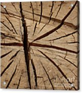 Split Wood Acrylic Print by Art Block Collections