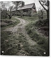 Spooky Apple Orchard Acrylic Print