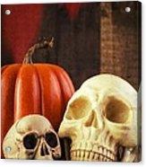 Spooky Halloween Skulls Acrylic Print by Edward Fielding
