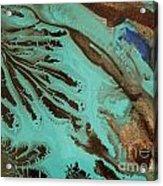 Spot Of Blue Acrylic Print