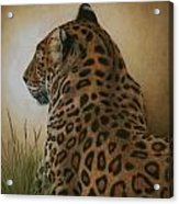 Spotted Elegance Acrylic Print