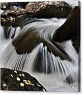 Sprague Creek Acrylic Print