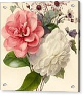 Spray Of Three Flowers Acrylic Print