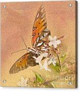 Spreading My Wings Acrylic Print