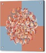 Spreeze Coral Acrylic Print