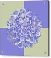 Spreeze Lilac Acrylic Print