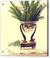 Sprigs Of Pine Acrylic Print
