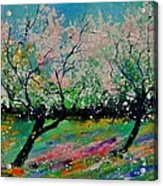 Spring 452121 Acrylic Print