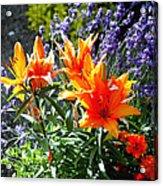 Spring 921 Acrylic Print