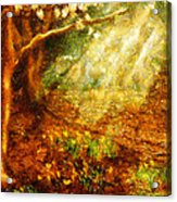 Spring - A Sign Of Spring Acrylic Print