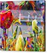 Spring Abstraction IIi Acrylic Print