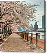 Spring Along The East River Acrylic Print