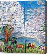 Spring And Horses Acrylic Print by Vicky Tarcau