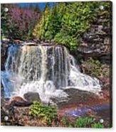 Spring At Blackwater Falls Acrylic Print